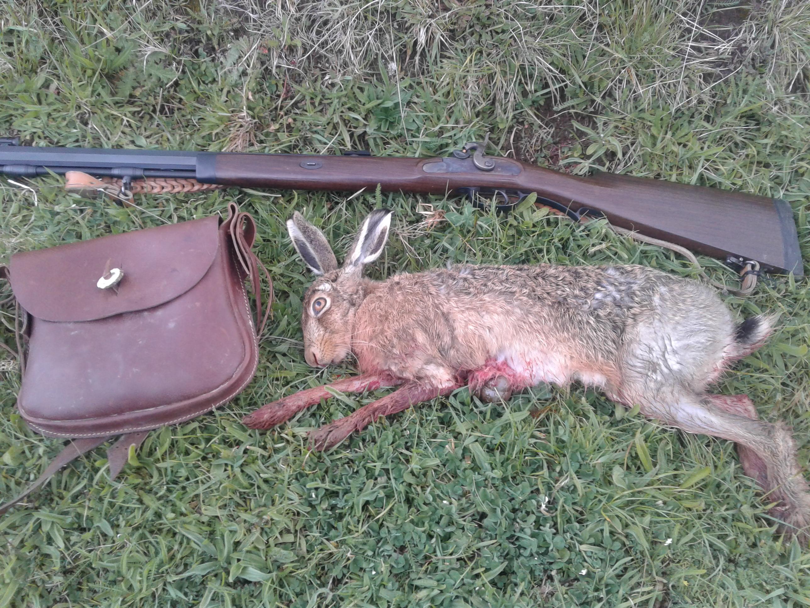 Name:  hare 50 cal.jpg Views: 263 Size:  2.74 MB
