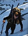 Name:  alpine_hunter.jpg Views: 377 Size:  34.9 KB