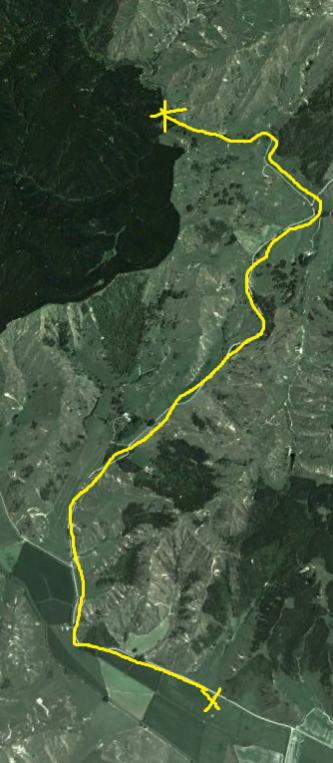 Name:  kumi walk.jpg Views: 344 Size:  41.6 KB