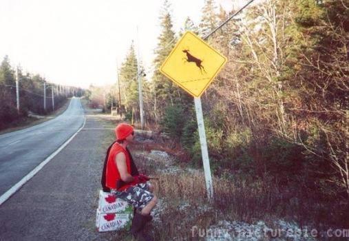 Name:  deer sign.jpg Views: 1095 Size:  34.8 KB