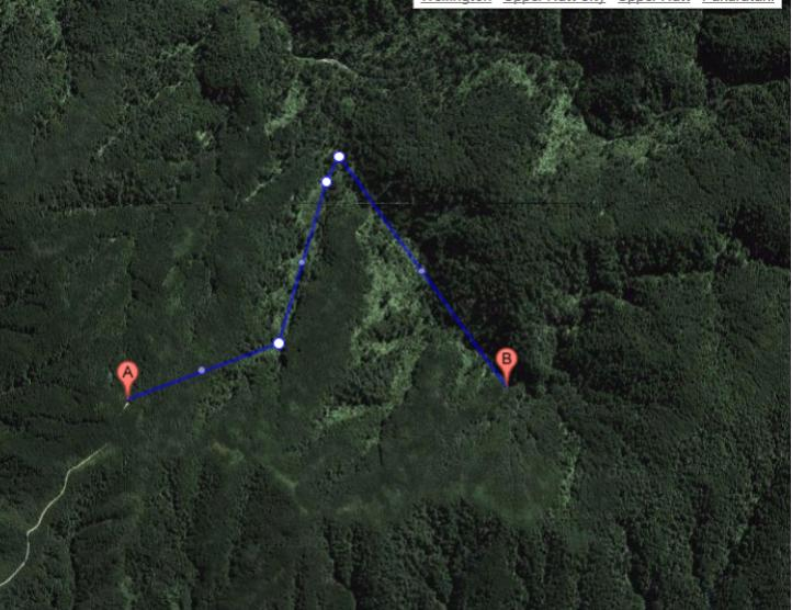 Name:  Good hunting spot - hutt water catchment.jpg