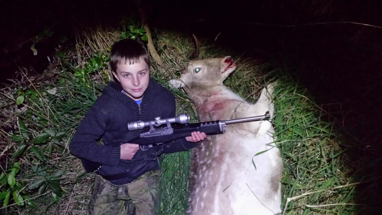 Name:  deer 2 (Copy).jpg Views: 244 Size:  115.3 KB