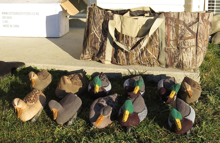 Name:  Decoys 11.jpg