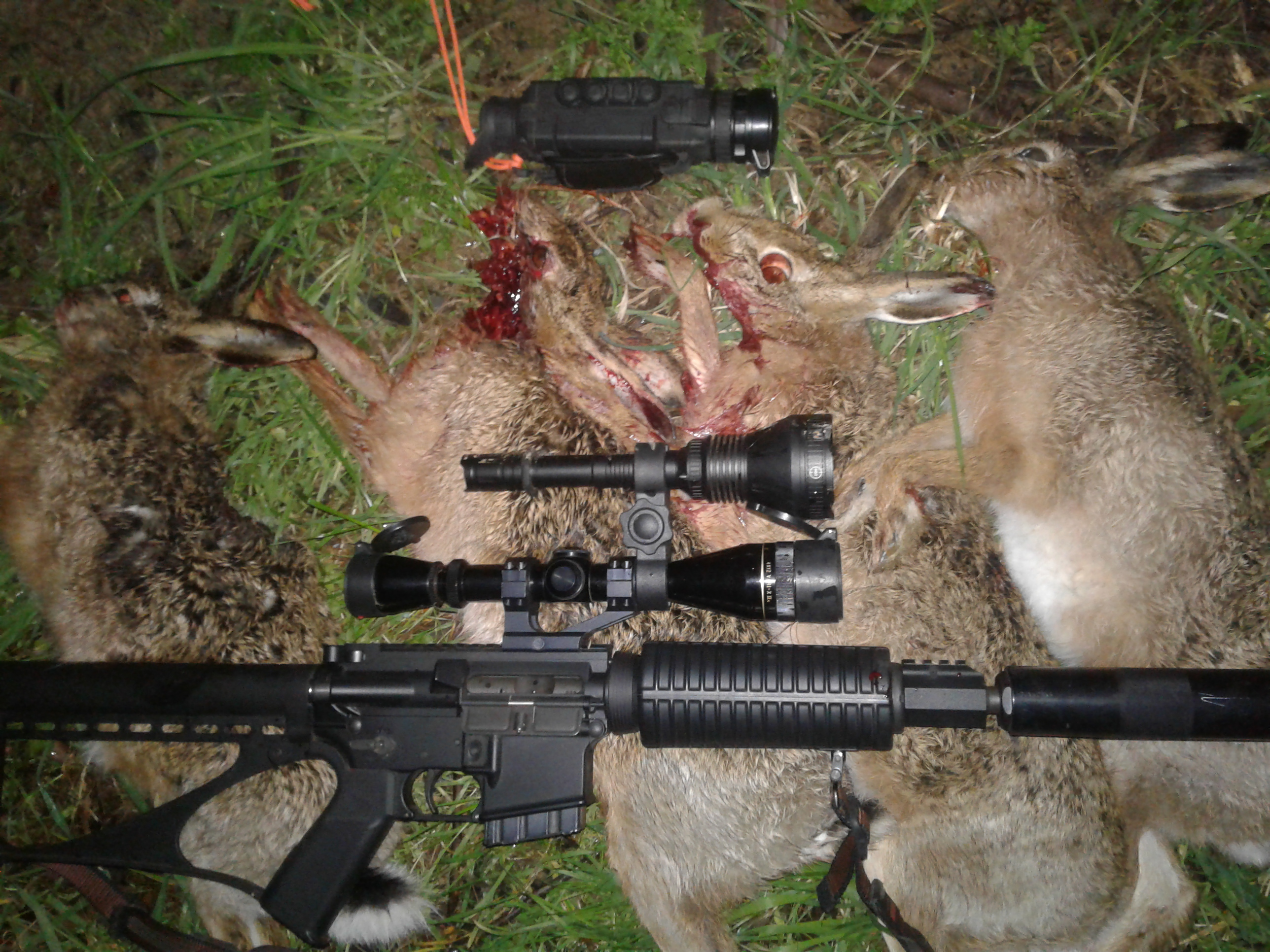 Name:  hare ar : thermal .jpg Views: 124 Size:  1.99 MB