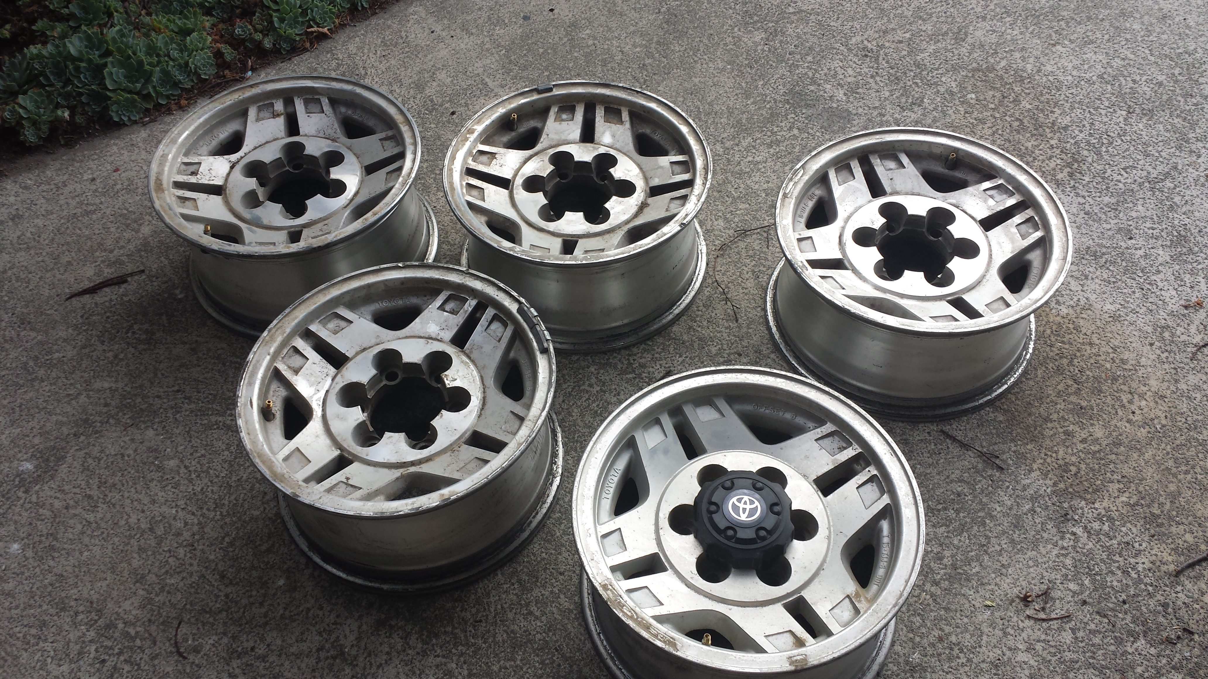 Name:  prado rims (2).jpg