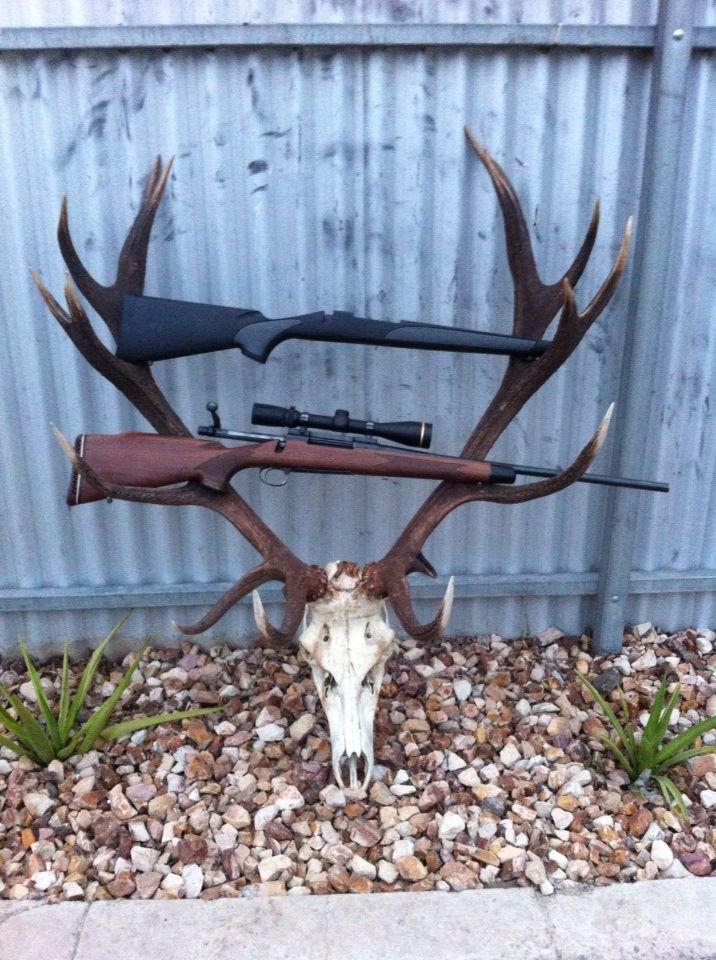 Name:  Remington Model 700.jpg Views: 427 Size:  137.6 KB