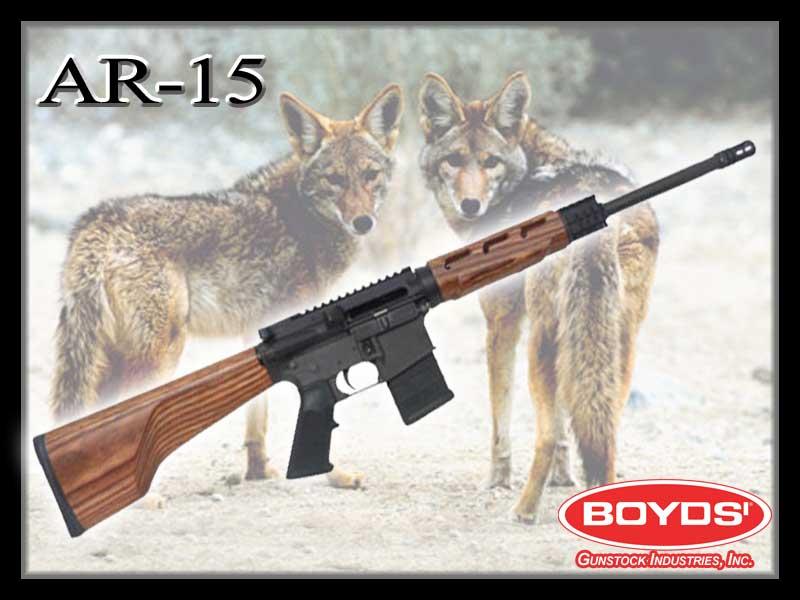 Name:  AR-15.jpg Views: 397 Size:  46.9 KB