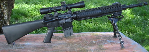 Any One Running A Mk12 Spr Type Rifle
