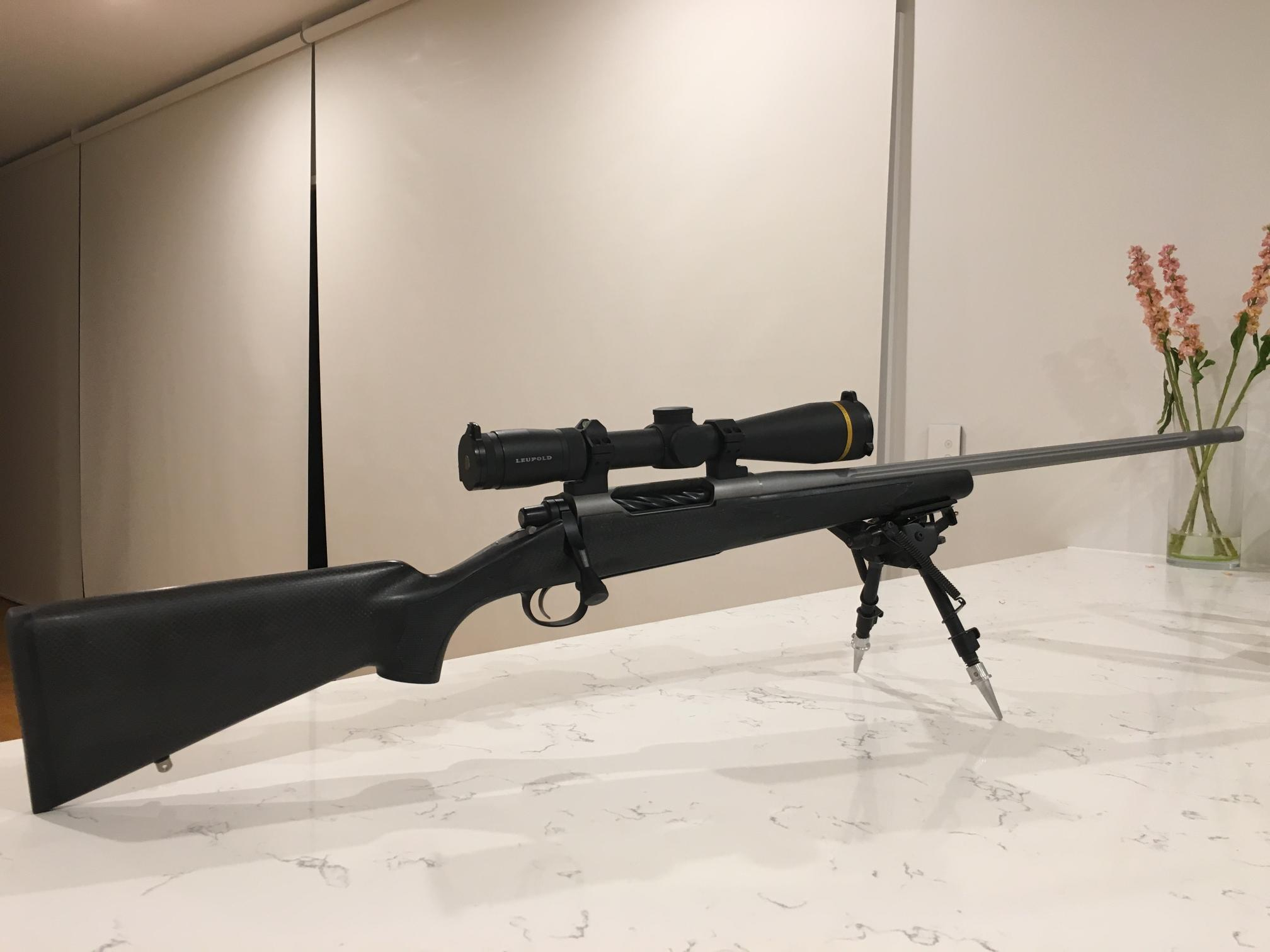 Name:  Rifle 1.JPG Views: 337 Size:  130.0 KB