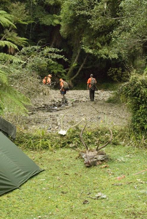 Name:  Heading up creek.jpg Views: 555 Size:  92.9 KB