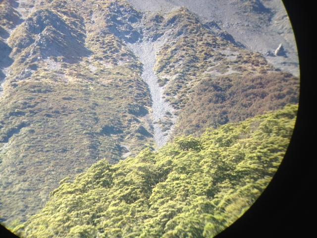Name:  photo 1.JPG Views: 412 Size:  191.8 KB