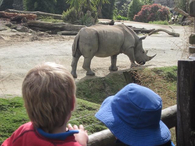 Name:  Kids @ Zoo (640x480).jpg Views: 588 Size:  235.2 KB
