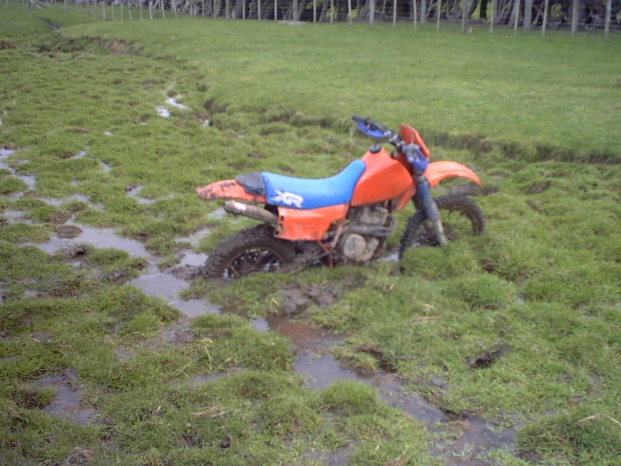 Name:  XR500 Stuck in Mud Karori Rock.jpg Views: 697 Size:  107.9 KB