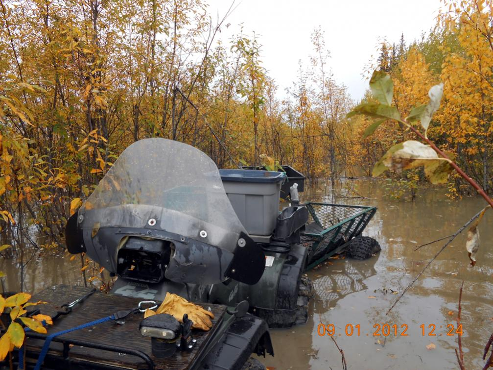 Name:  moose camp submerged c.jpg Views: 233 Size:  157.4 KB