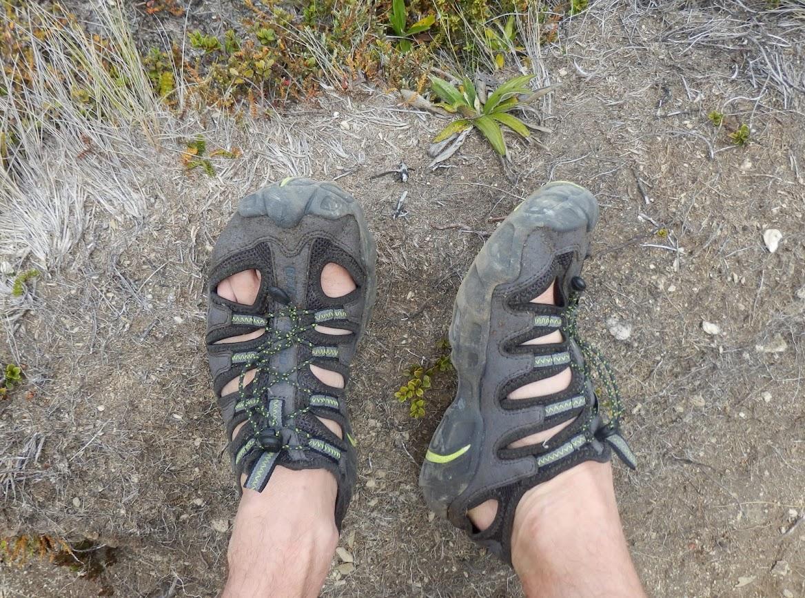 Name:  shoes.JPG Views: 336 Size:  416.4 KB