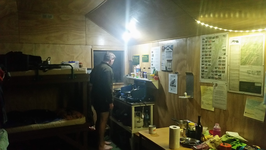 Name:  cooking with hut lights.jpg