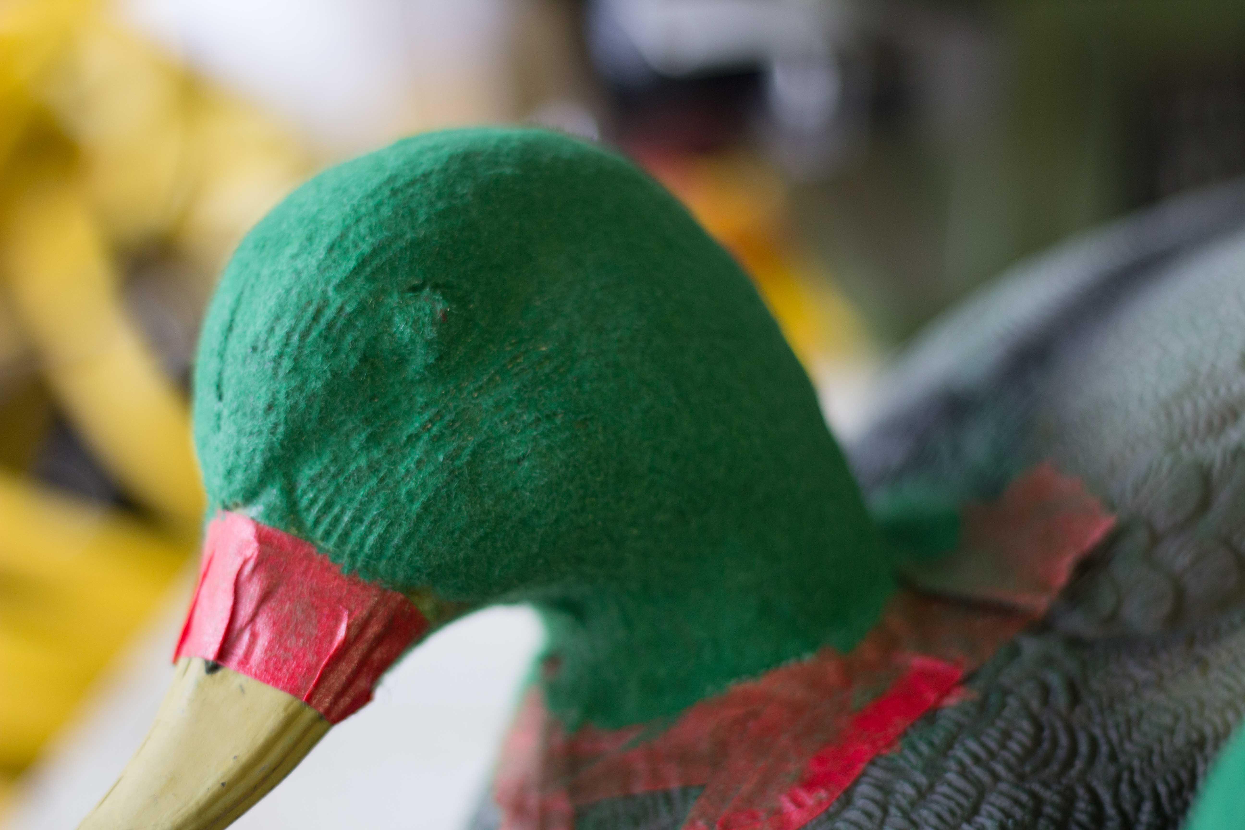 Name:  Flocking-2.jpg Views: 194 Size:  499.8 KB