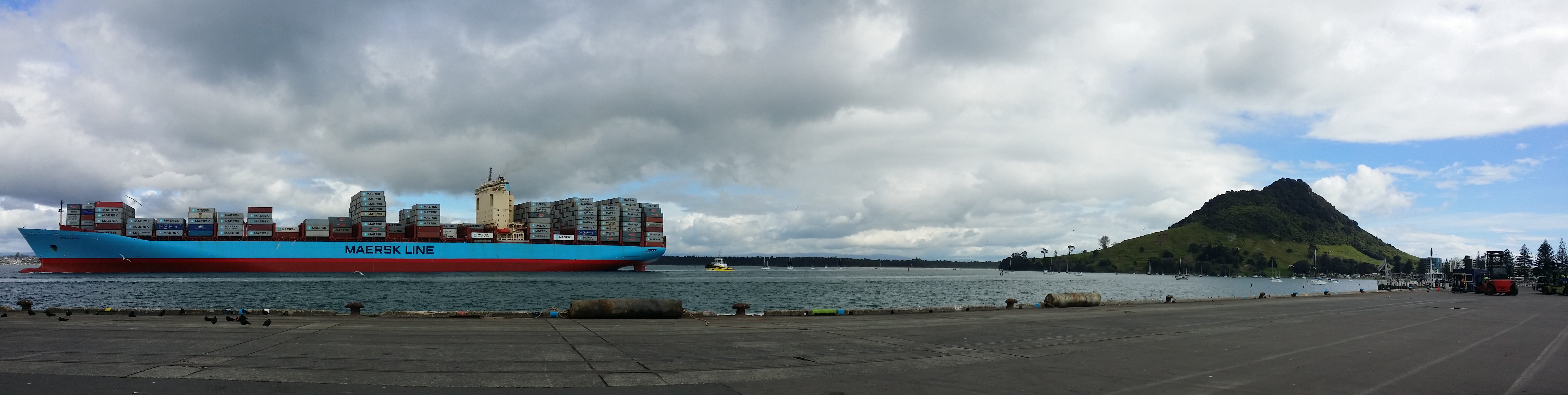 Name:  Mega Maersk.jpg Views: 195 Size:  2.56 MB