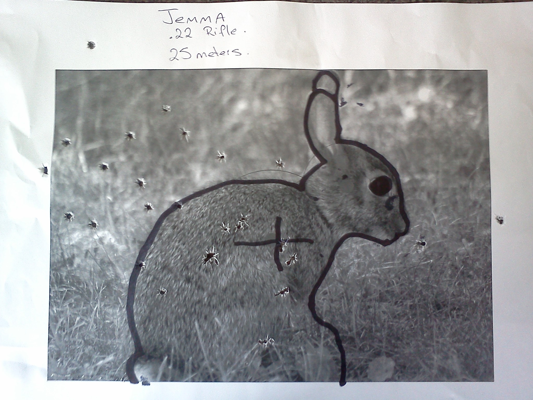 Name:  rabbit jemma 25m.jpg