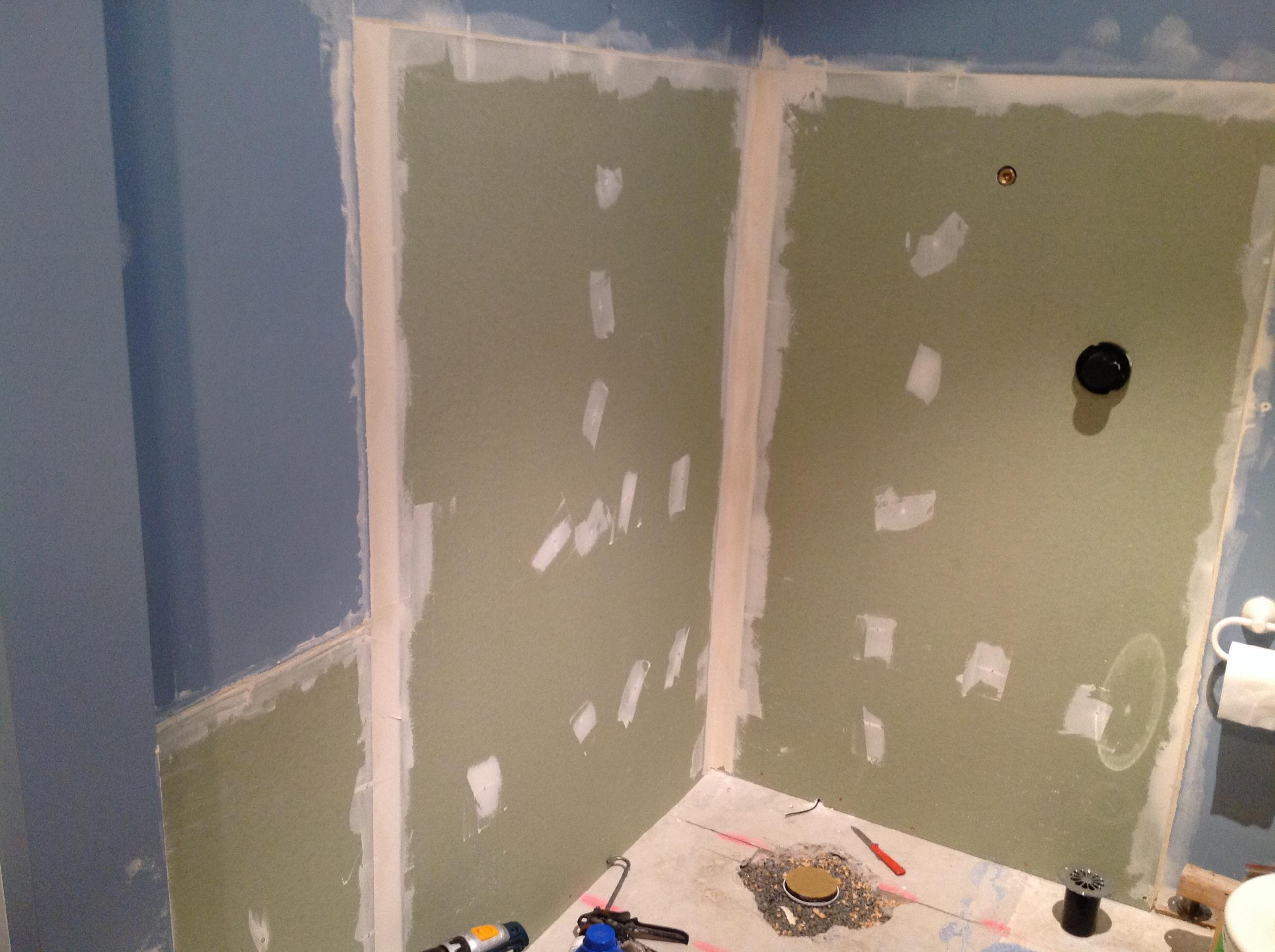 Bathroom reno for Shower reno