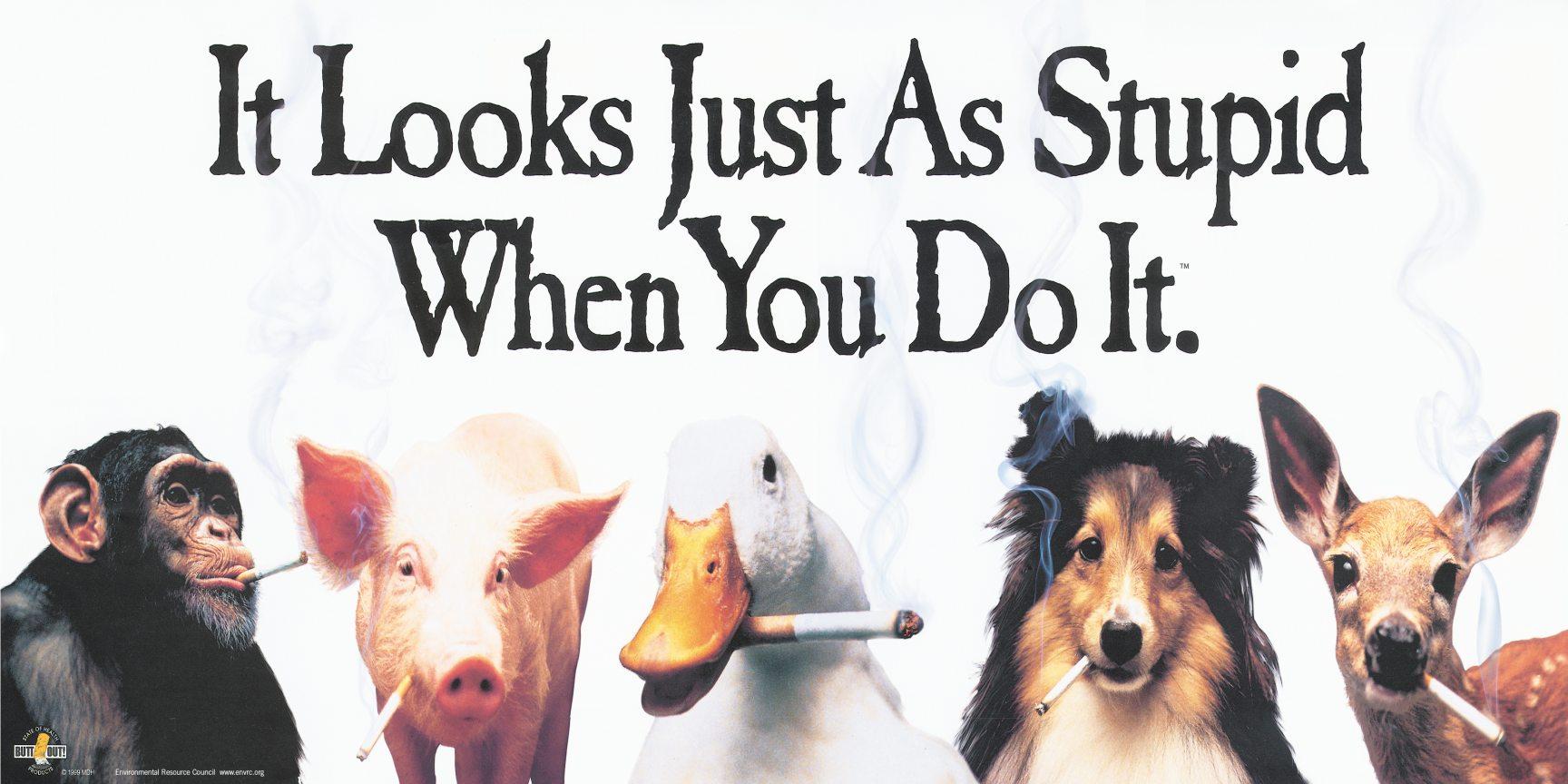 Name:  animals-smoking-24x12.jpg Views: 69 Size:  184.9 KB