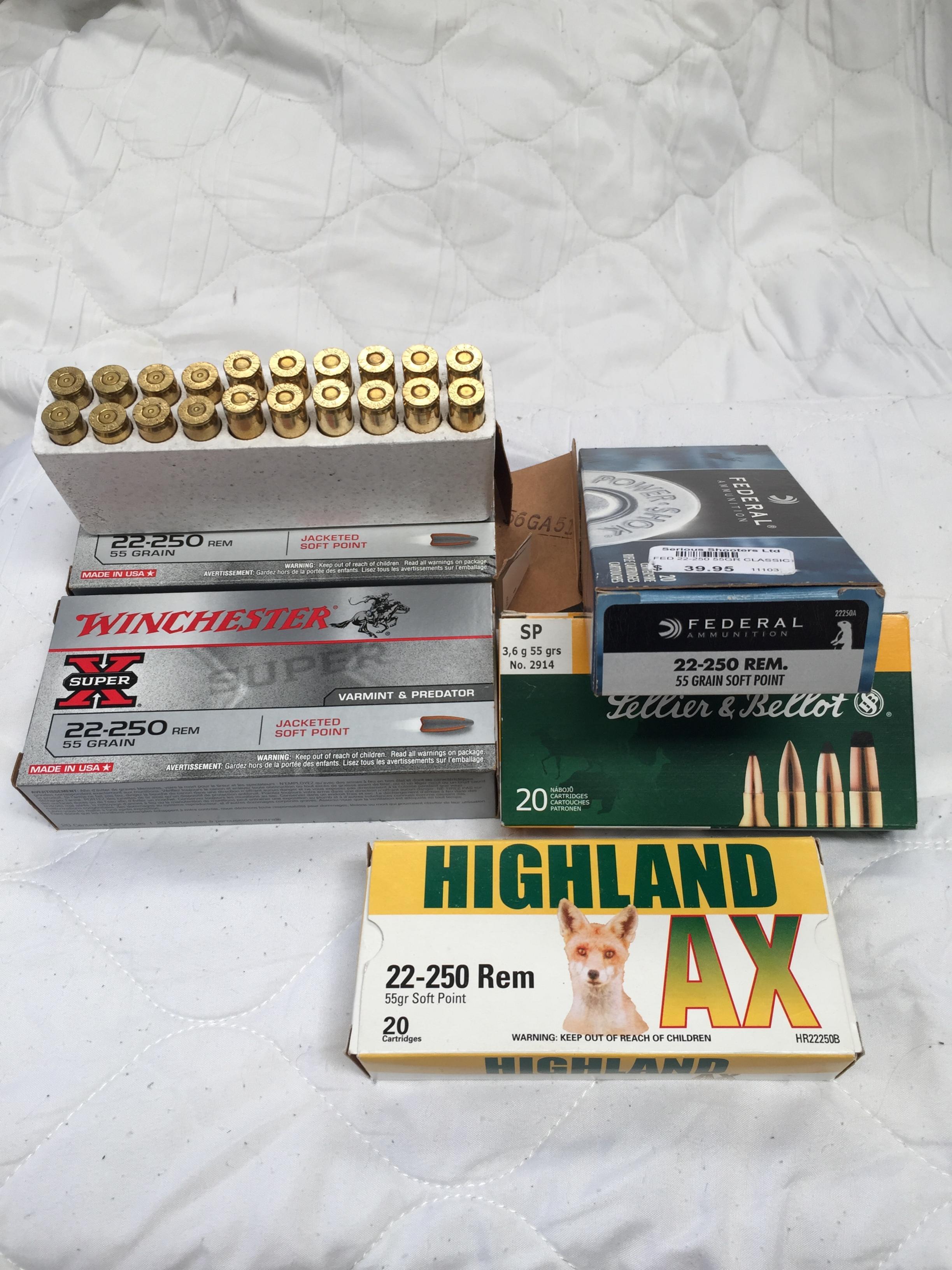 Name:  22 250 ammo.jpg Views: 112 Size:  719.1 KB
